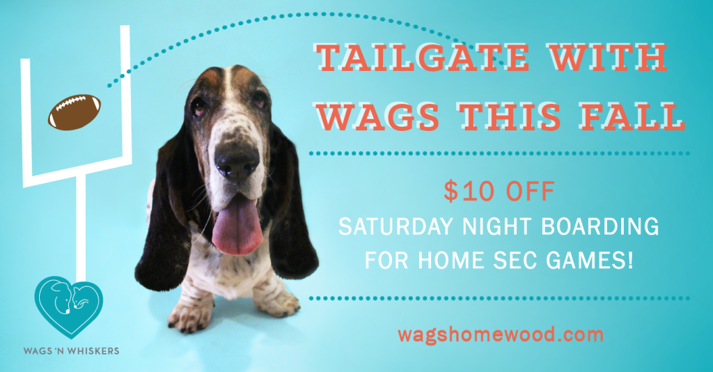 wags-football-special